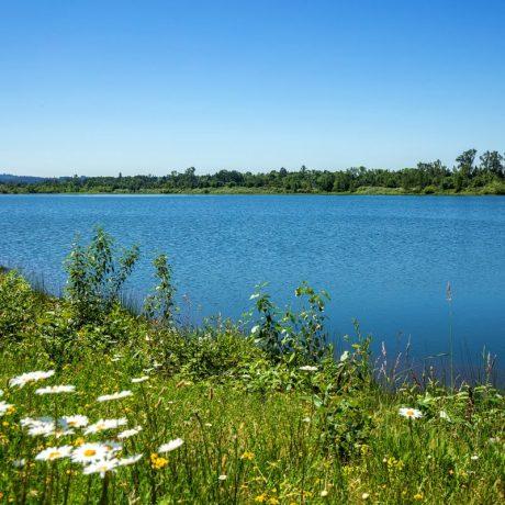 Meadowlark MCH Lake View