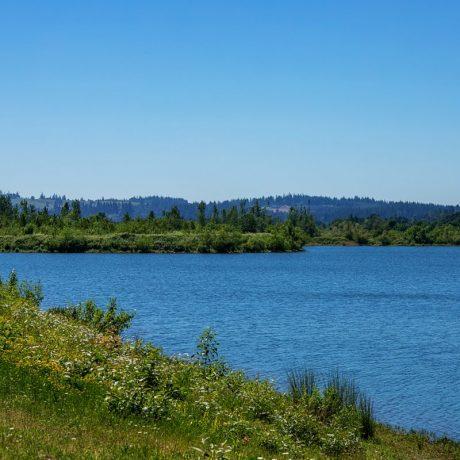Meadowlark MCH Scenic View